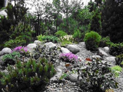Украшения ландшафтного сада каменистыми участками