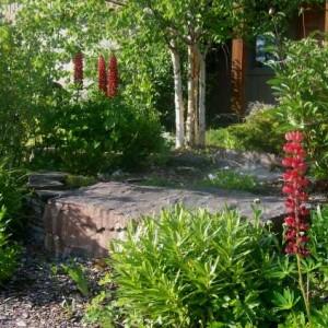 frontyard-garden-beds-3