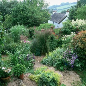 garden-path-ideas35