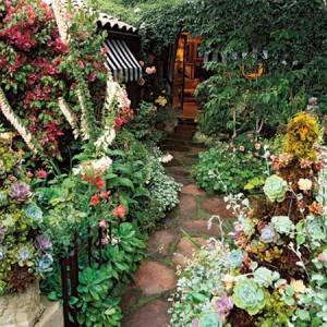 garden-path-ideas42