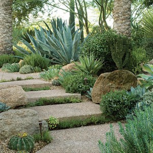 garden-path-ideas46