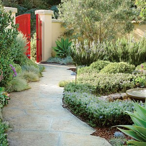garden-path-ideas52