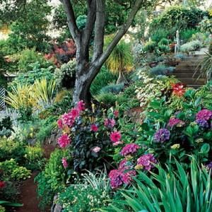 garden-tours-by-martha2-5