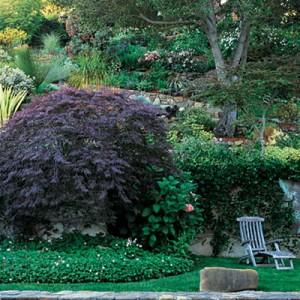 garden-tours-by-martha2-6