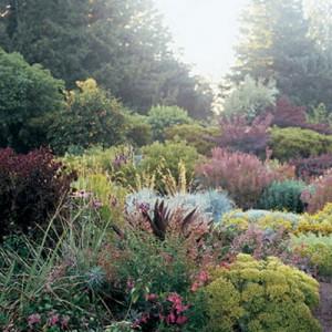 garden-tours-by-martha3-3