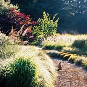 garden-tours-by-martha3-5