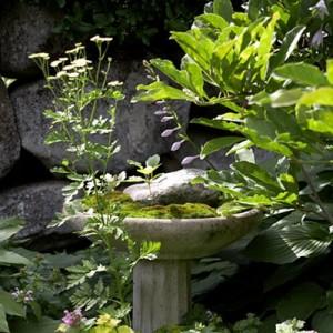 garden-tours-by-martha4-5