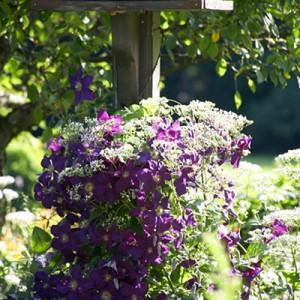 garden-tours-by-martha4-7