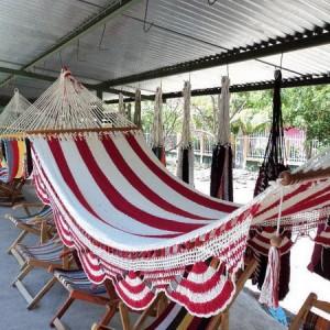 hammock-in-garden2-4