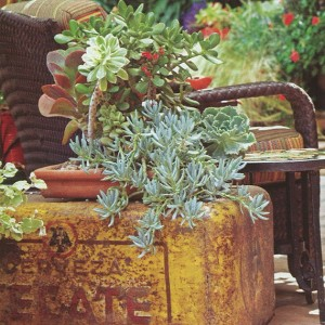 master-southern-patio-and-landscape5-5