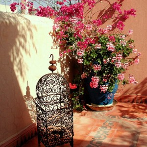 morocco-courtyards-and-patio1-1