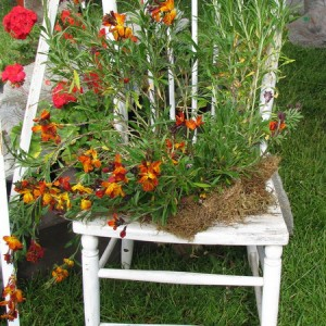 planting-flowers-in-chairs2-2
