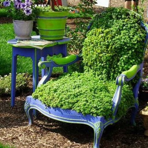 planting-flowers-in-chairs4-3