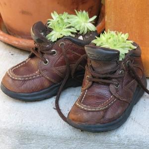 клумба из ботинка