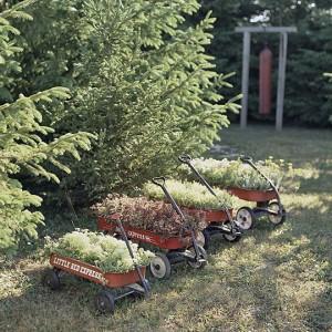 vintage-garden-pots1-11