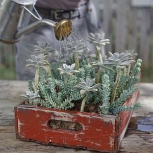 vintage-garden-pots1-12