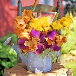 vintage-garden-pots1-2