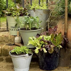 vintage-garden-pots1-5
