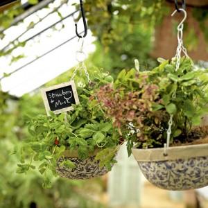 vintage-garden-pots4-1