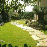 Зеленый газон — красота и уют вашего участка