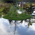 Чудо-остров в вашем пруду