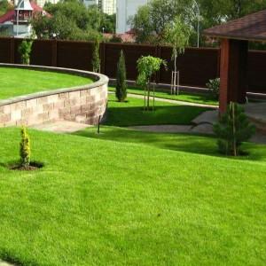 Клумбы и газоны