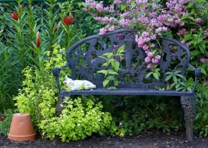 Обустройство небольшого сада