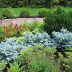 Прогрессивные методы обустройства садов и огородов