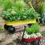 Яркий контейнерный сад и множество вариантов его создания