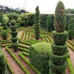Как создать фигурный сад?