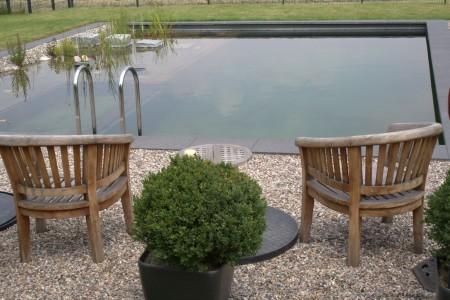 Что выбрать: бассейн или пруд?