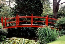 Виды садовых мостиков