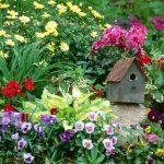 Красивые и интересные идеи оформления клумб и цветников своими руками