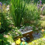 Новая жизнь старой ванны из чугуна или пруд на даче из подручных материалов