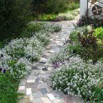 Садовые дорожки, 50 фото