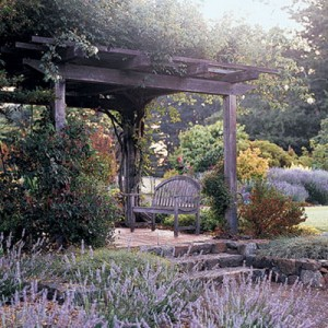 garden-tours-by-martha3-2