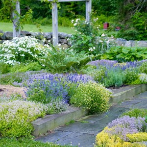 garden-tours-by-martha4-4