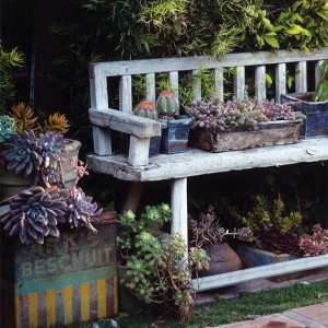 master-southern-patio-and-landscape5-4