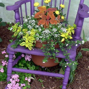 planting-flowers-in-chairs-colorful2