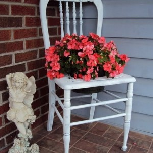 planting-flowers-in-chairs2-13