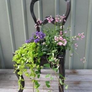 planting-flowers-in-chairs2-4