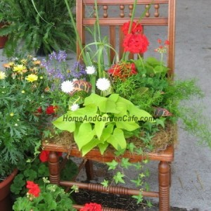 planting-flowers-in-chairs2-7