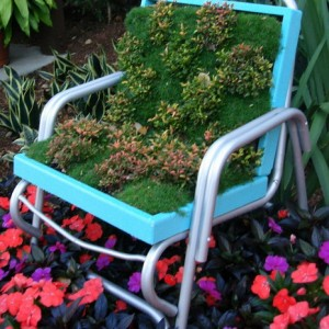 planting-flowers-in-chairs4-1