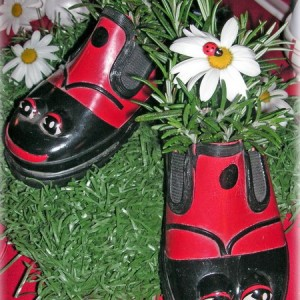 shoes-container-garden1-1
