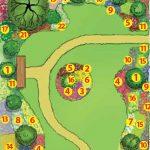 Проект озеленения парадной зоны