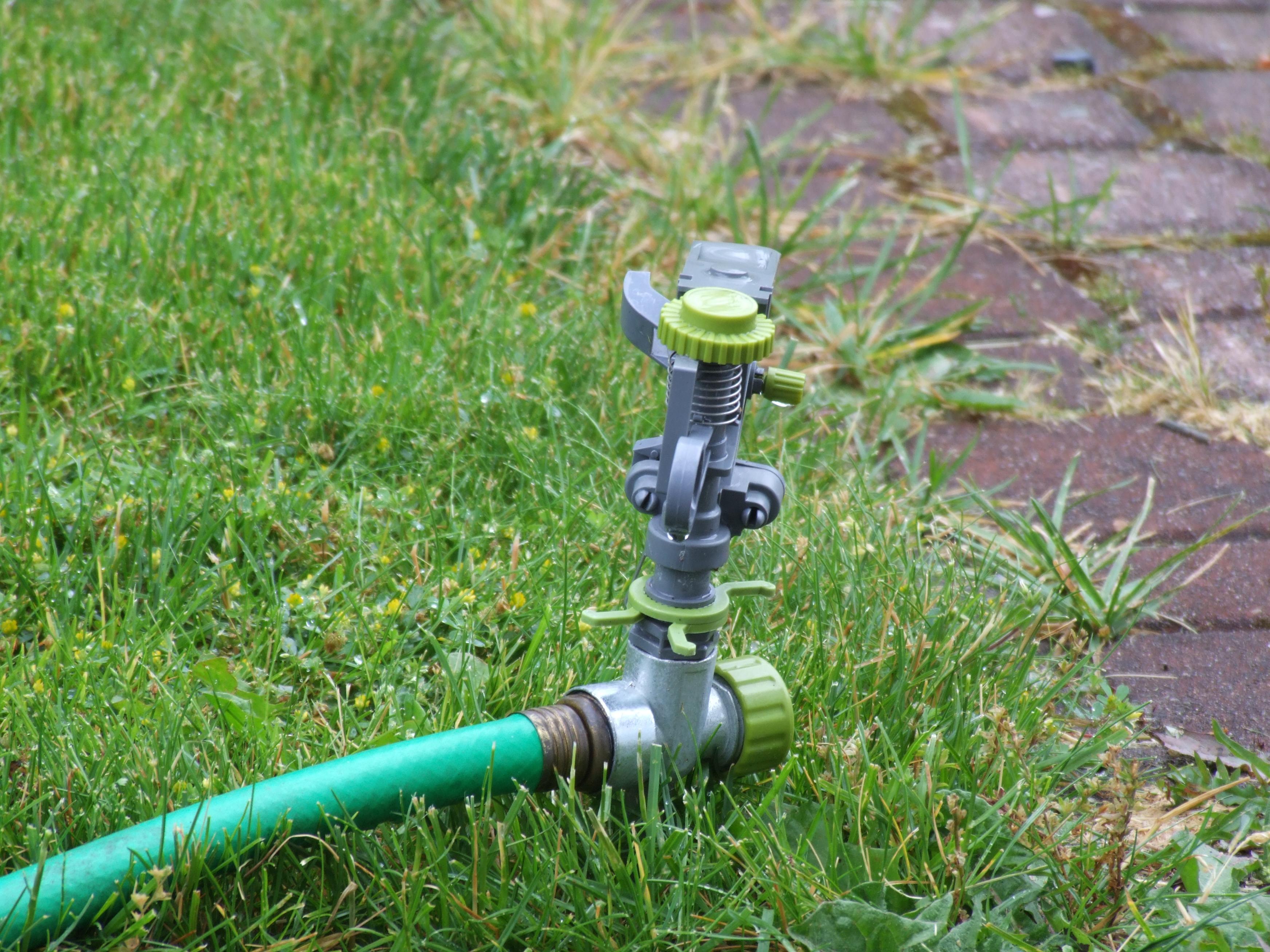 как правильно поливать газон
